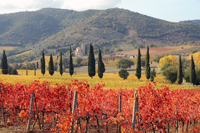 siena-italy-travel-guide-montalcino-St-Antimo-Abbey