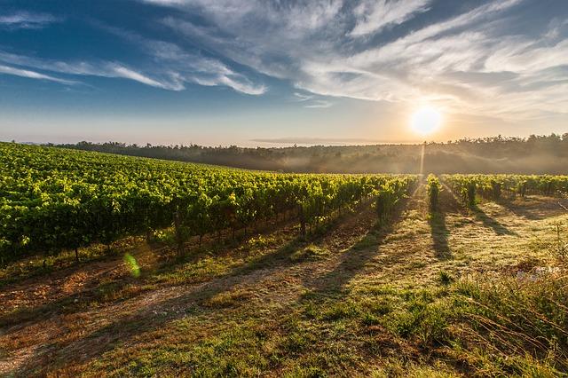 italys wine country