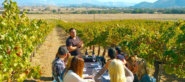 Group Wine Tour | Tour Italy Now