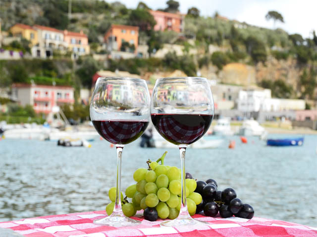 italian wines viticulture essay Free sample essay on italian wines (viticulture) the purpose of this paper is to critically review and understand the science of grapes italian wines (viticulture.
