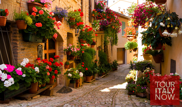 spello-umbria-italy-flower-alley