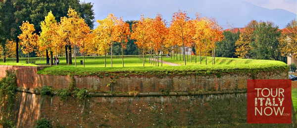 Lucca Italy in autumn