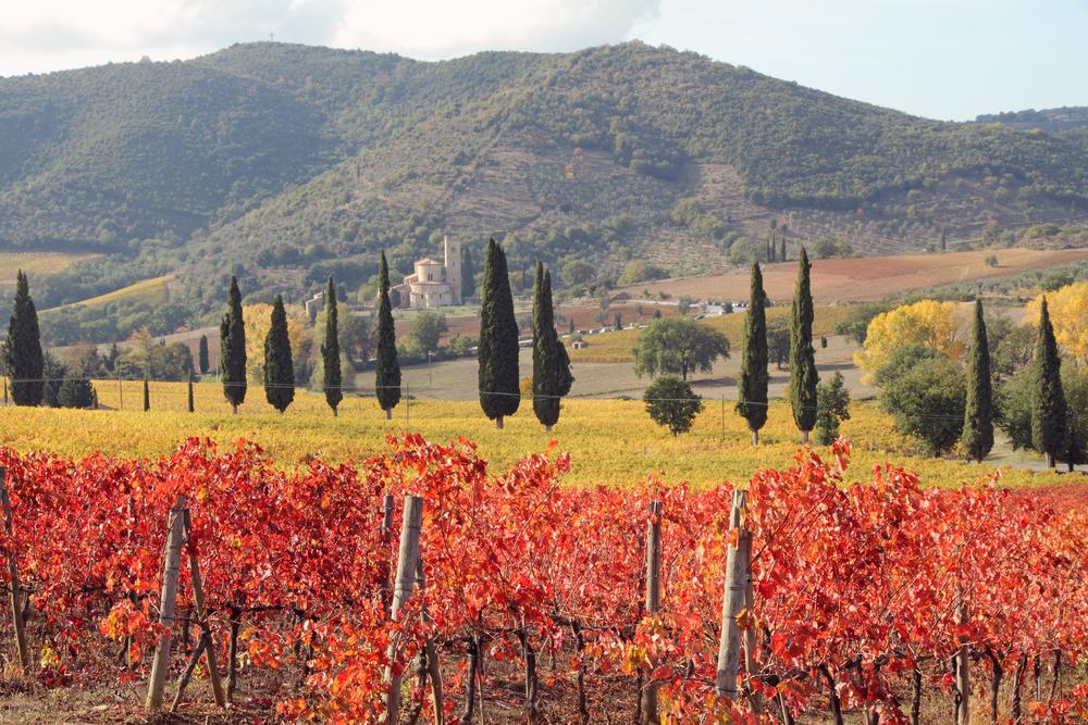 Montalcino, Italy in autumn
