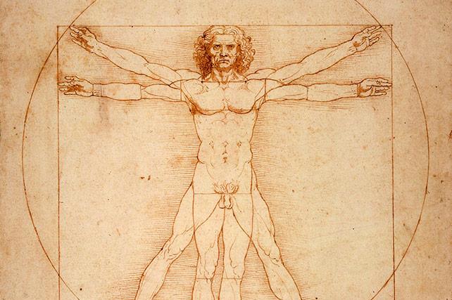 Gallerie dell'Accademia Da Vinci Vitruvian Man