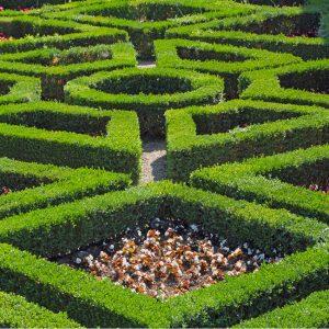 Boboli Gardens Florence Italy Hedge Maze